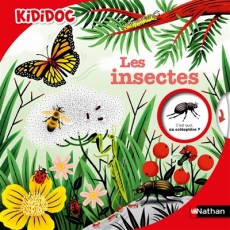 Insectes_Nathan.jpg